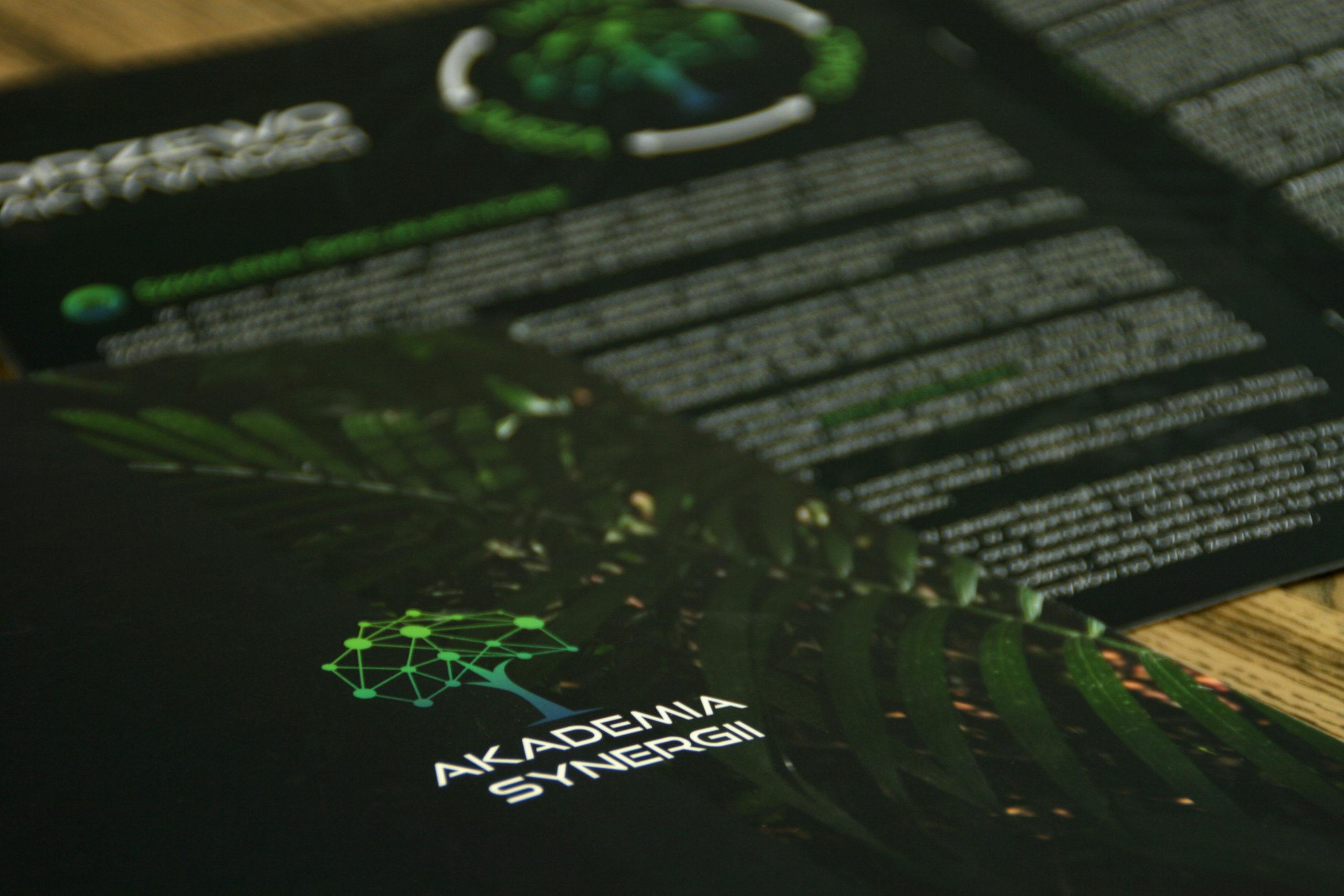 Realizacja reklamy Akademia Synergi